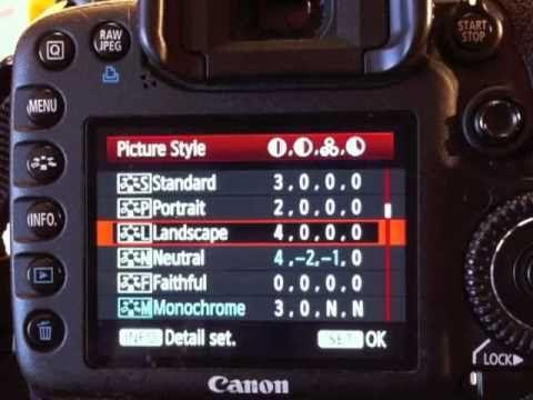 Good tutorial for camera settings