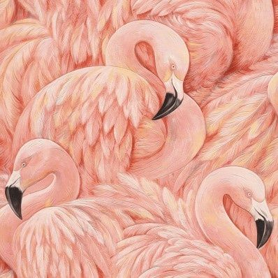 flamingo dieren rose vogel behang - Flamingo wallpaper at abcbehang.nl