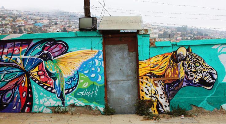 valparaíso-mural-colbrí-leopardo