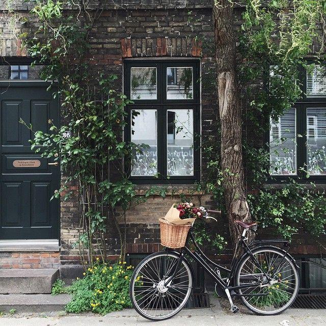 Special bike rides