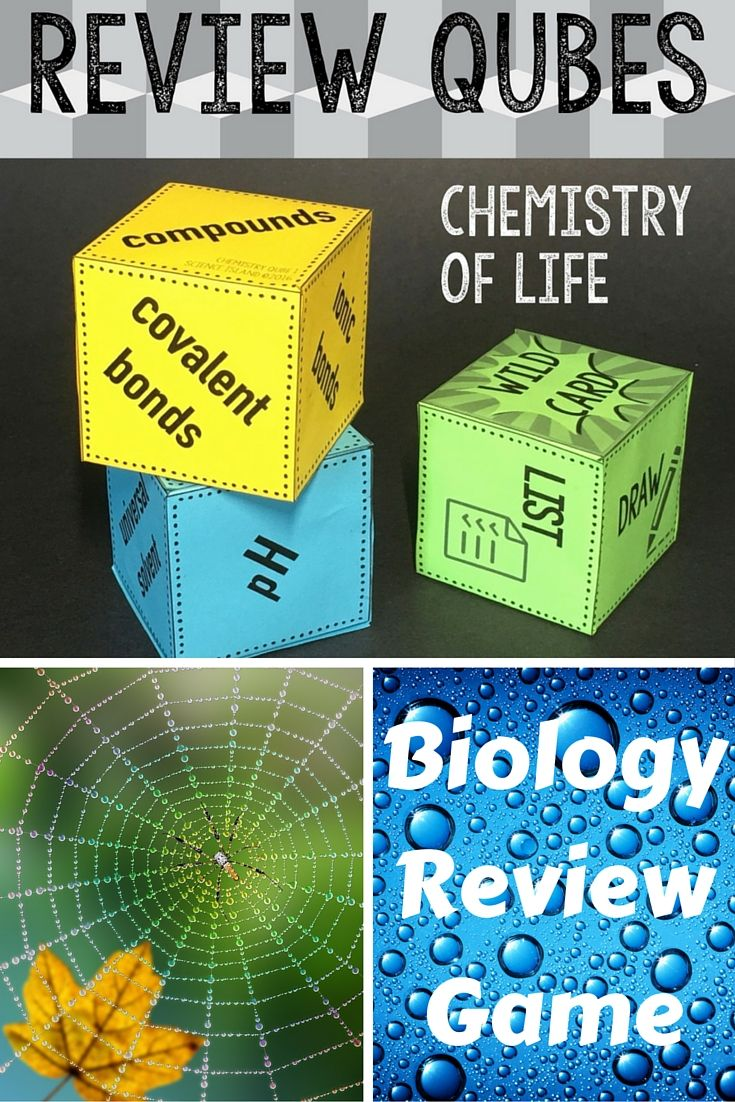 bio the chemistry of life Chemistry of life chemistry review the basics of chemistry you'll need to know to study biology large molecules learn about structures and properties of sugars, lipids, amino acids, and nucleotides, as well as macromolecules including proteins, nucleic acids and polysaccharides.