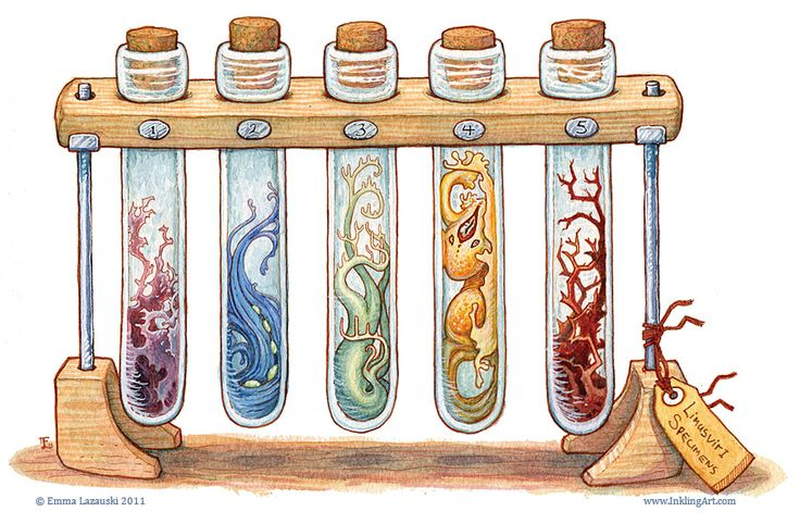 Bottled Creatures by Emma Lazauski —-x—- More:... | Creatures from Dreams