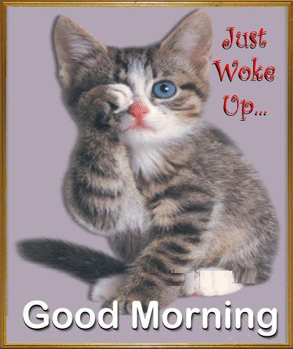 A Very Cute Morning Ecard.