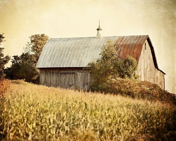 Rustic Barn Print or Canvas Wrap Autumn Wall Art Farmhouse Decor Warm Gold