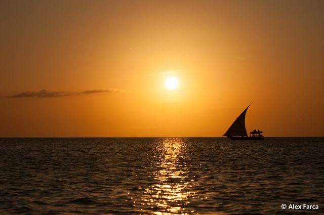 Apus in Zanzibar / Sunset in Zanzibar