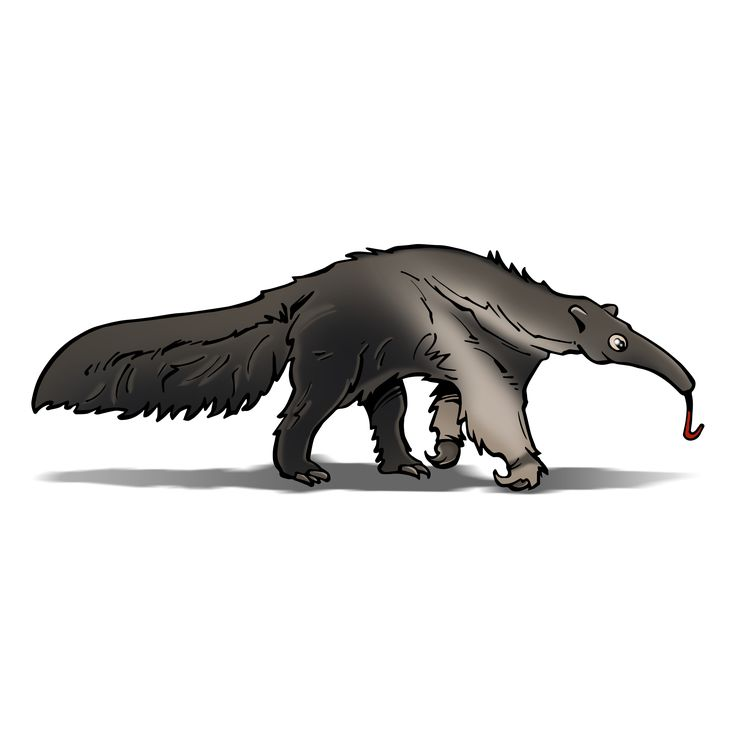 Perfect Earth - Giant Anteater