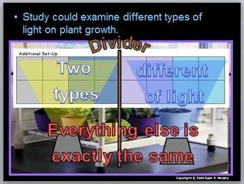 botany themes intended for presentation