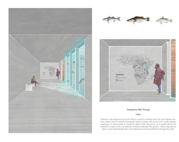 Design project for an elephant house at a regional safari park. - Simon Cadle - Architecture Collage Visual