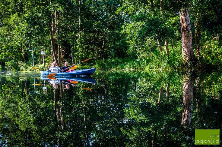 Welcome to Spreewald, the water labyrinth of Brandenburg! | Witamy w Szprewaldzie, wodnym labiryncie Brandenburgii!