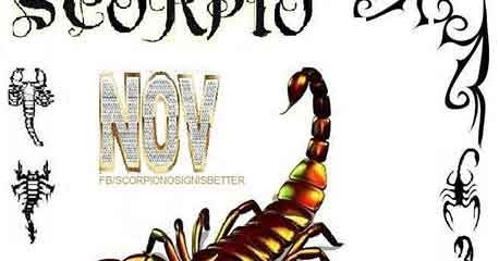 Because November 15 Scorpios possess a need to understand what is happening, they can easily pick up on new tasks, making them talented at multiple career choices. Their professional lives will therefore change quite frequently, and this will all...
