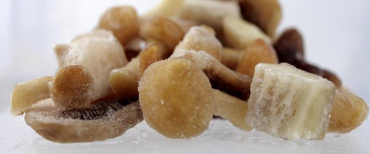Frozen Mixed Mushrooms   Appennino Funghi e Tartufi