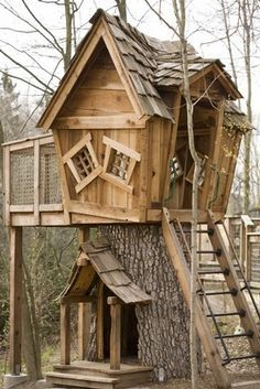 Wooden house built on a tree trunk. Could be used as a raised dog house.