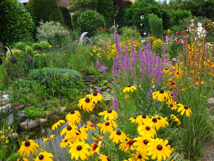 Sommerfeeling am Gartenteich  #unsertraumingruen