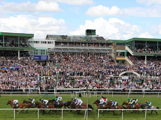 Newcastle racecourse.