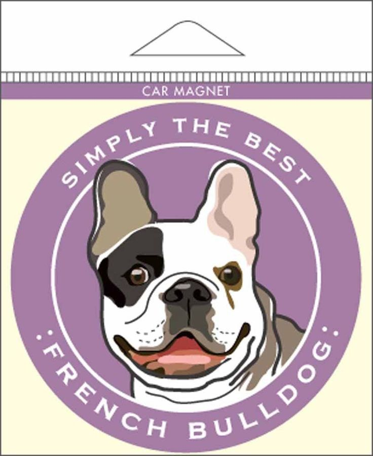 161 Best French Bulldog Images On Pinterest Drawings French