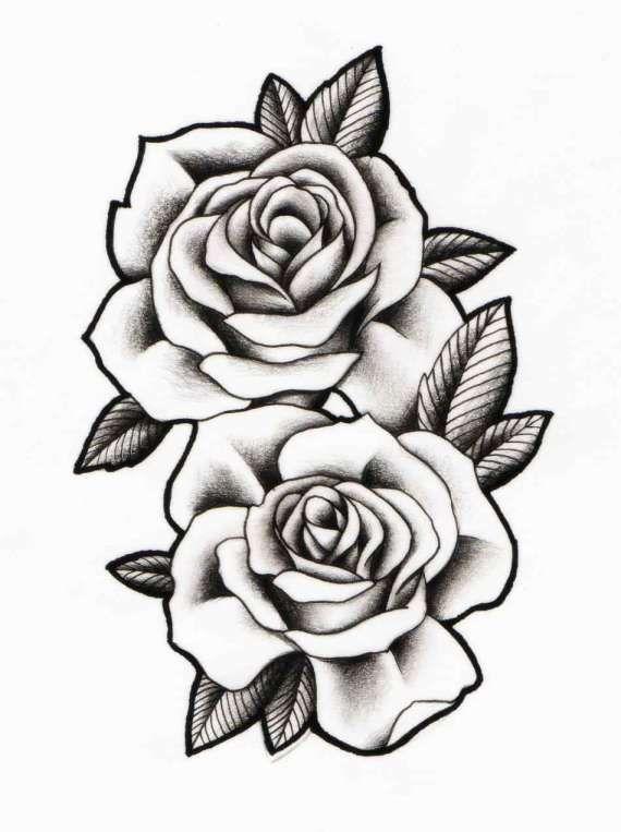 15+ 2 Roses Drawing - Drawingwow.com