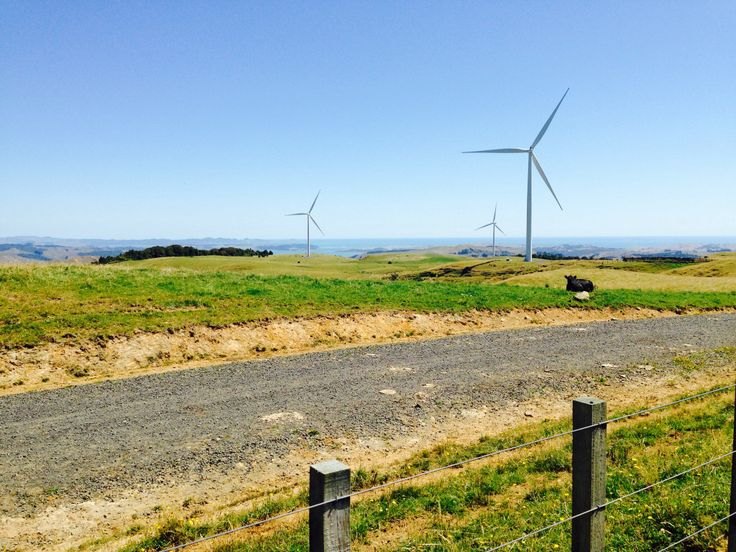 Wind Farm ride Te Mata near Raglan.