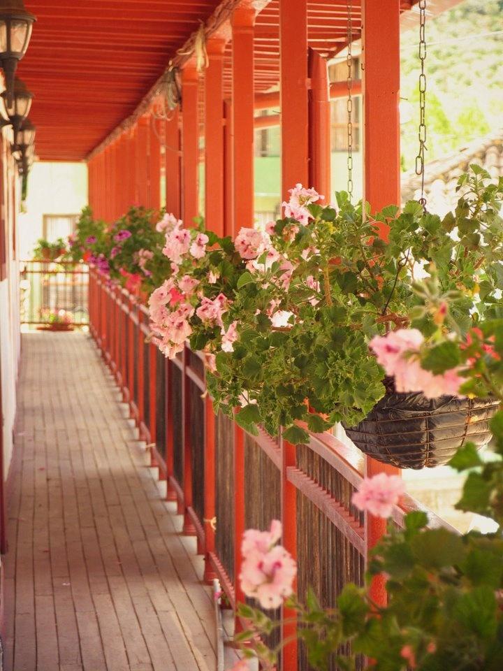La arquitectura tradicional antioqueña refleja una fuerte influencia de la cultura española. Este balcón, adornado con hermosas y florecidas materas colgantes, es uno de los elementos característicos de una amplia vivienda paisa diseñada para familias numerosas.  Medellín.travel