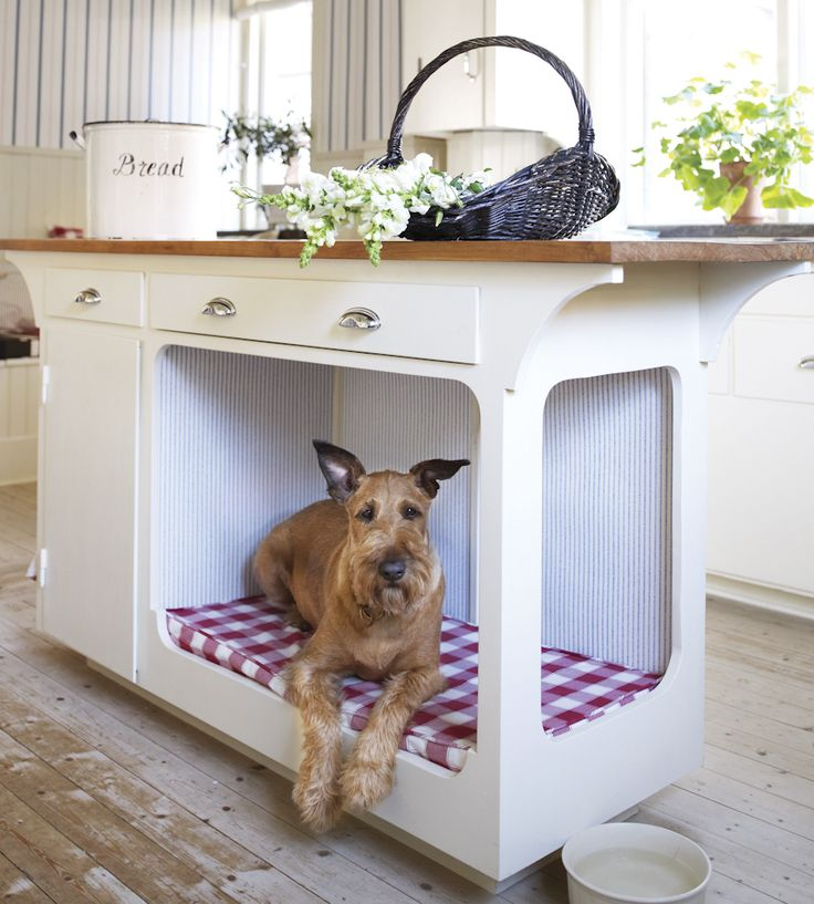 What better place to sleep than under the kitchen counter!  Trend | Scandi | Hilda Wallpaper by Sandberg | Jane Clayton