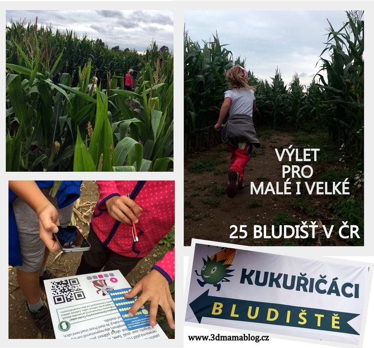 BLUDIŠTĚ V KUKUŘICI – 3dmamablog.cz