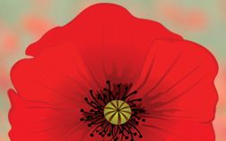 Educators - Information For - Remembrance - Veterans Affairs Canada
