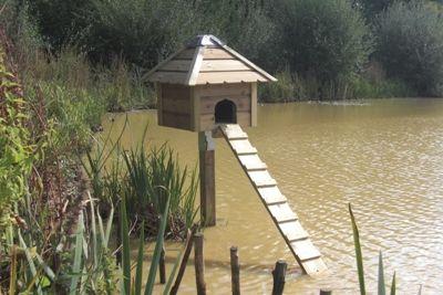 38 best ducks images on pinterest ducks farm animals for Duck houses and runs