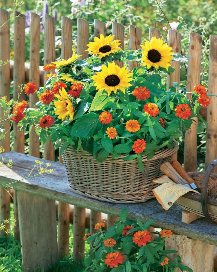 80 besten kleiner garten bilder auf pinterest kleine g rten pflanzen und balkon for Landhausgarten deko