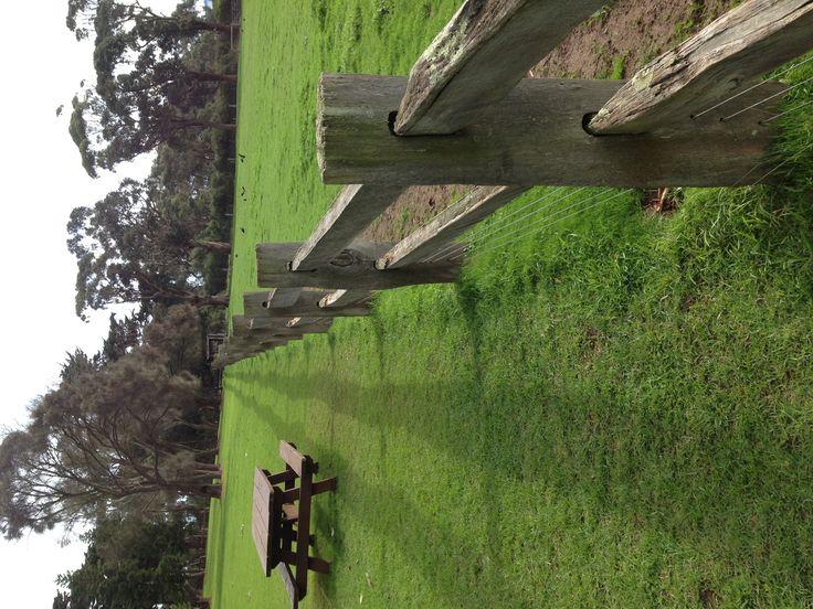 23 Best Fencing Images On Pinterest Farm Fencing Garden