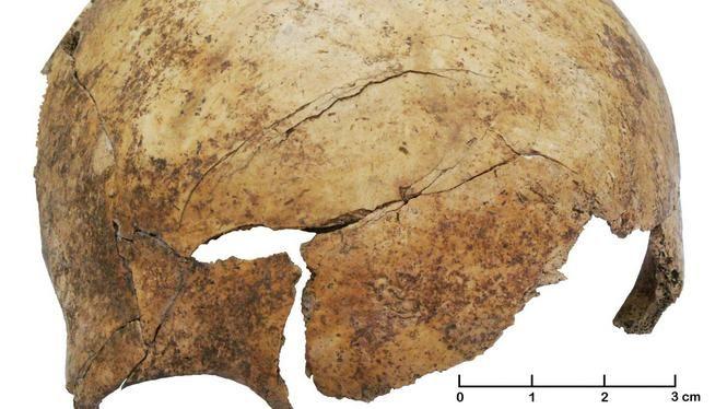 Een ingeslagen schedel van een 8-jarig kind, gevonden in het massagraf nabij Frankfurt.
