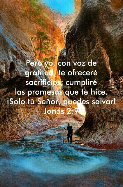Jonas 2:9