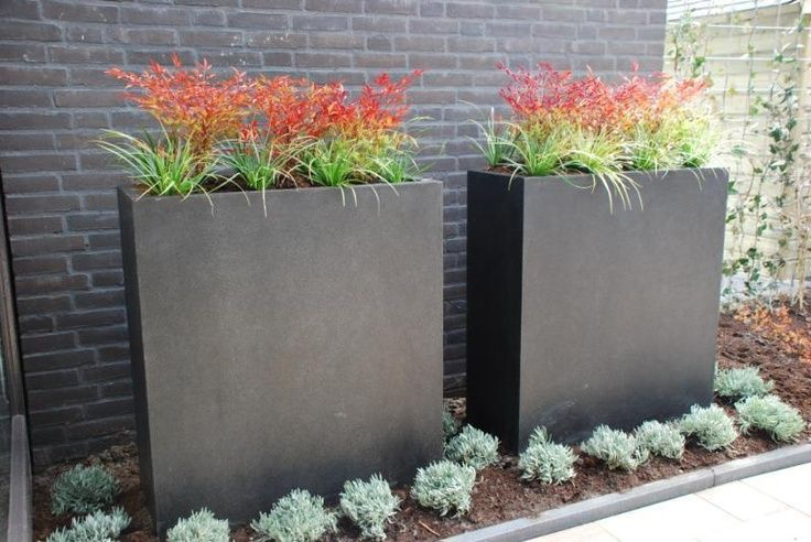 Tall Thin Planters
