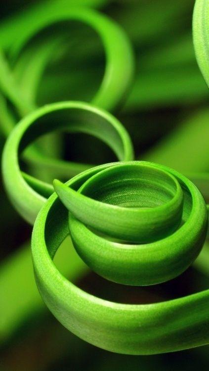 Beschwingt-natürliches Grün
