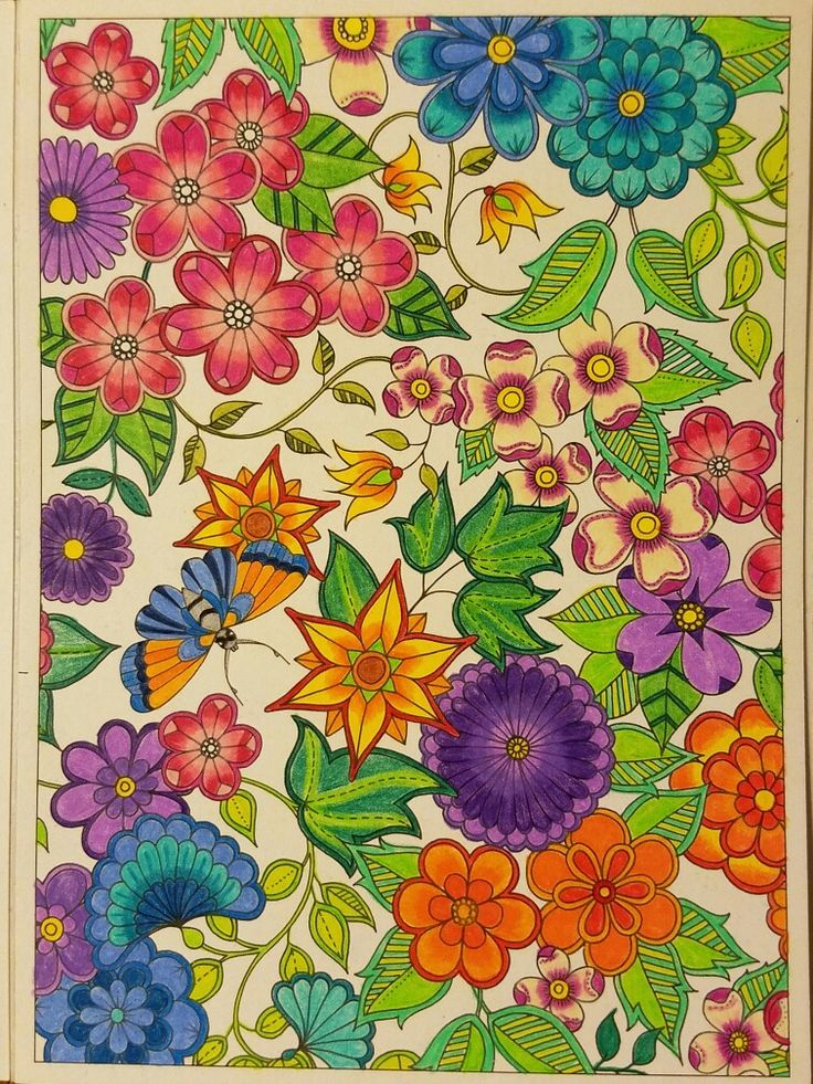 712 Best Images About Johanna Bashford Adult Coloring On