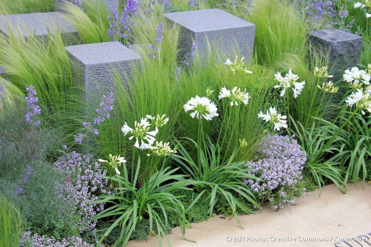 plantes ornementales chelsea and pelouses on pinterest With idee allee de maison 16 5 facons de mettre en scane les graminees detente jardin