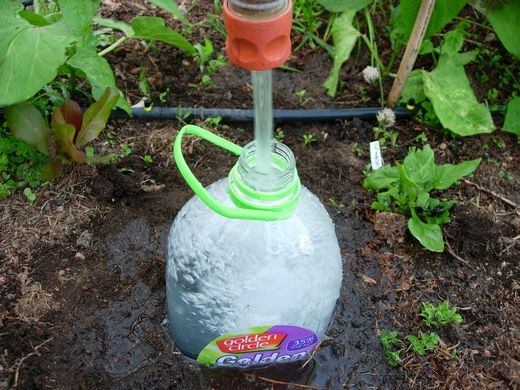DIY drip system - two small holes in bottom, slightly bury bottle in ground
