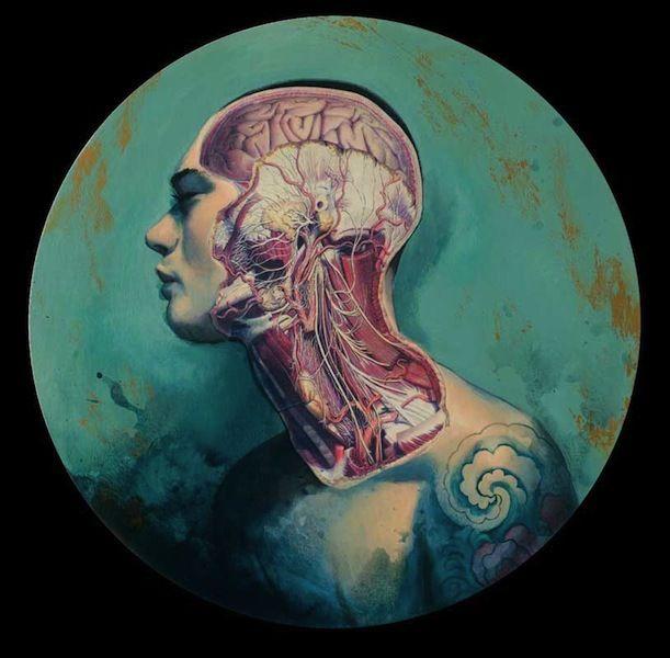 Fernando Vicente propose deux séries de peintures anatomique, l'une qui montre des coupes de la biologie de ses sujets et une autre où il les imagines en androïdes. Il y en a plus sur son site.