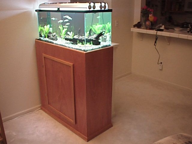 Best 25 40 gallon aquarium stand ideas on pinterest for Fish tank and stand combo