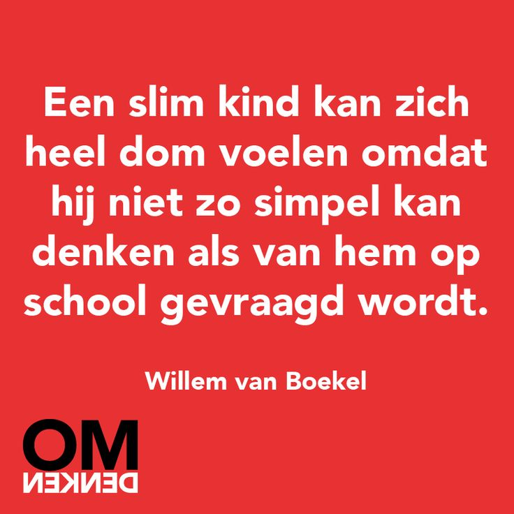 A highly gifted or 'clever' kid might feel pretty stupid because he might not be able to think as simple as school is asking from him.  - Willem van Boekel