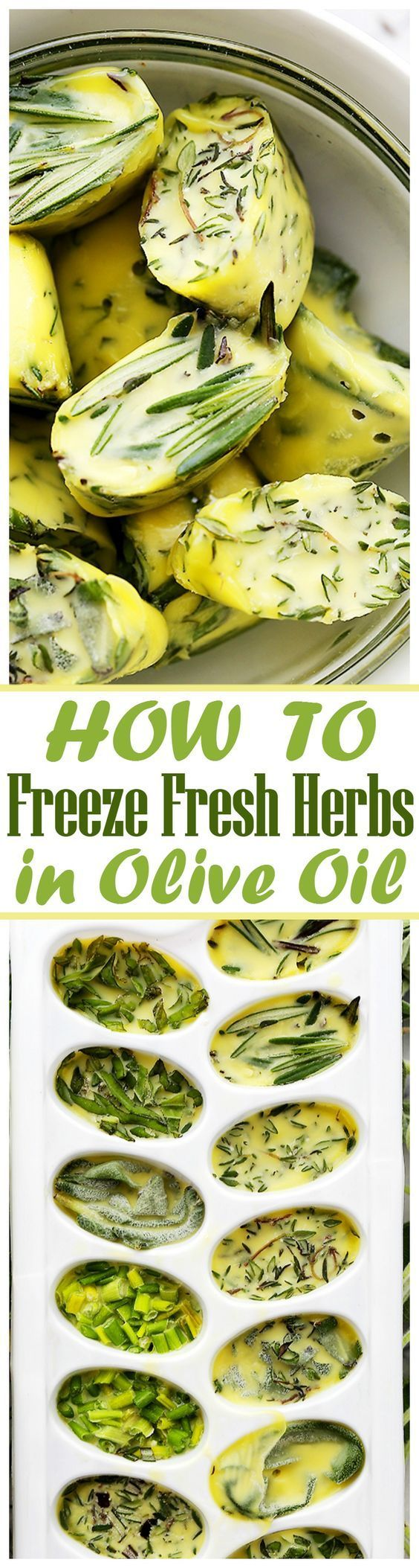 How to Freeze Fresh Herbs in Olive Oil - Freezing fresh herbs in olive oil is the perfect way to preserve herbs! AND! It can go from the freezer straight to the frying pan. (Bake Dinner Olive Oils)
