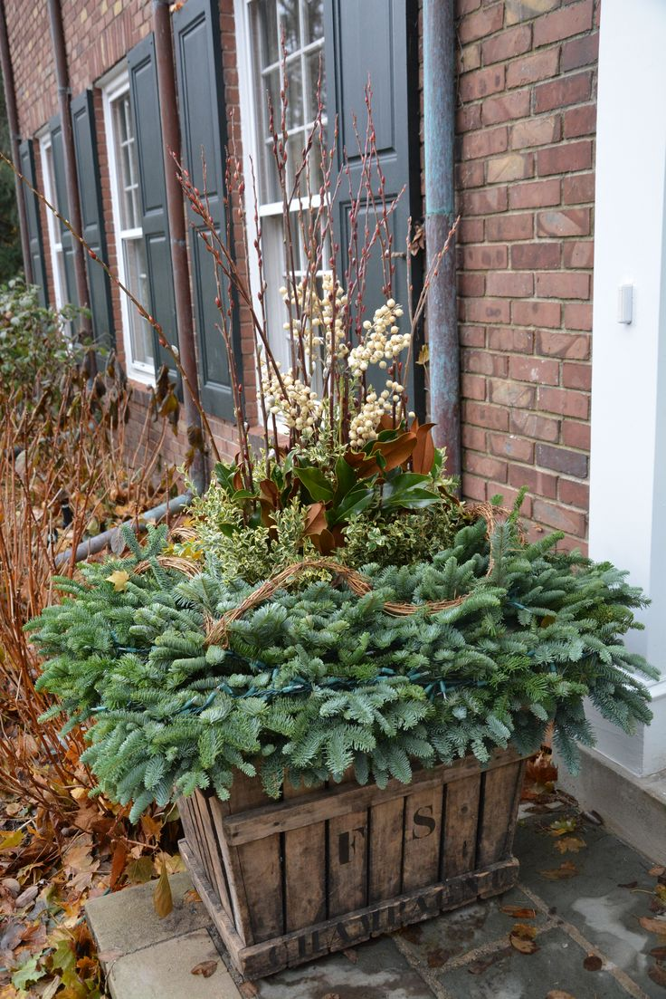 152 best winter containers images on pinterest