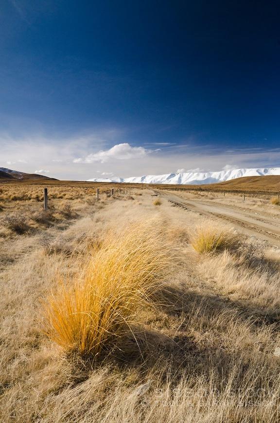 Hawkdun Range Road, tussocks and the Hawdun Range, Central Otago, New Zealand