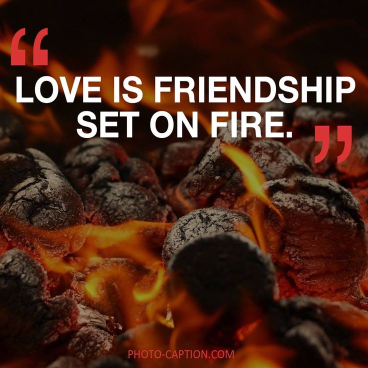 ''Love is friendship set on fire.'' Check out the link in the bio for more love captions #love #lovely  #inlove #me #obsessed #amazing #perfect #everygirlsstory #sparkle #BOYFRIEND #cute #beautiful #girlfriend #girl #couple #dating #marriage #date #instalove #instamood #loveyou #lovehim #loveher #quote #quotes #quotegram #quoteoftheday #caption #captions #photocaption #FF #instafollow #l4l #tagforlikes #followback