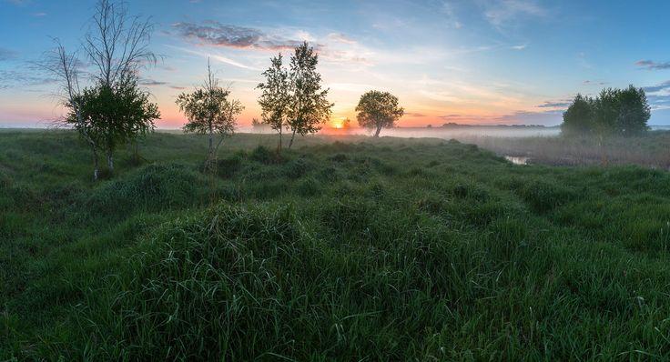 juicy grass in May by Alexandr Bredikhin on 500px
