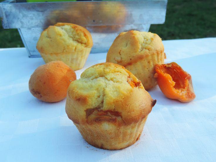 Muffins aux abricots.  La recette en vidéo: https://www.youtube.com/watch?v=6ojrRGbEWYI