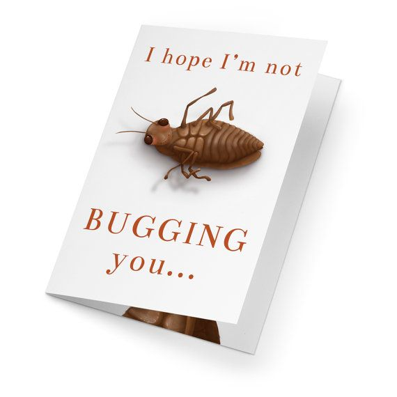 INSTANT DIGITAL DOWNLOAD - no physical card provided This card contains terrible puns, which so perfectly fall into my type of anti-humor. If you have a weird sense of humor like I do, this card is just right for you. Plus, adorable cockroaches. Who doesnt love those? No one, thats who.  - Format - PDF (with easy to follow cut and score lines)  - Extra PDF included with detailed instructions.  - For best results get your card(s) printed at a local print shop on 100LB or more white A4…
