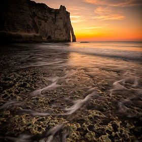 Hot Popular Driftwood-119 Pictures-Global hot pictures