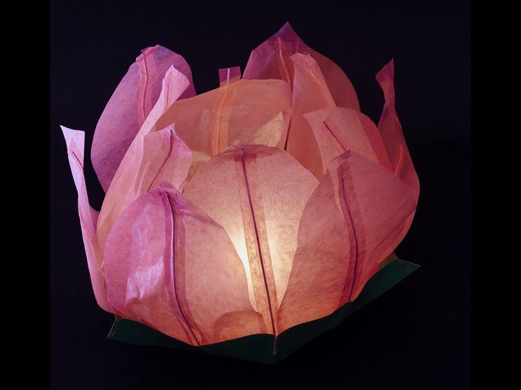 Ninfea Galleggiante di carta di riso rosa.Diametro 50 cm. Sono inclusi la candela, il manuale e il pennarello. Riutilizzabile, basta cambiare la candela.Istruzioni, la preparazione è molto facileScrivere...