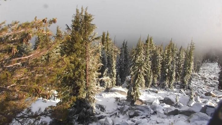 Snow storm in the Sierra Nevada on last day of summer turns deadly  An early season storm turned deadly Thursday as a slick roadway on a highway in California triggered a chain reaction crash involving 16 vehicles and at least one fatality.