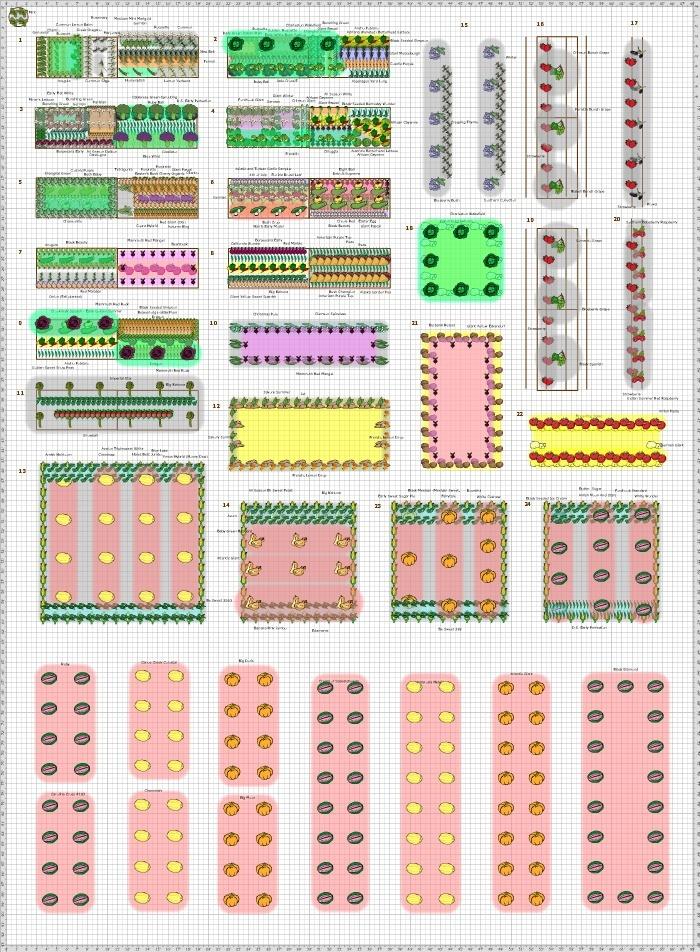 Garden Plan - 2013: Market-1