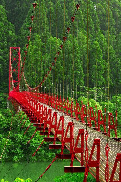 """The Shinyo Bridge, Japan. Built in 1636. It is also called the """"Sacred Bridge."""""""